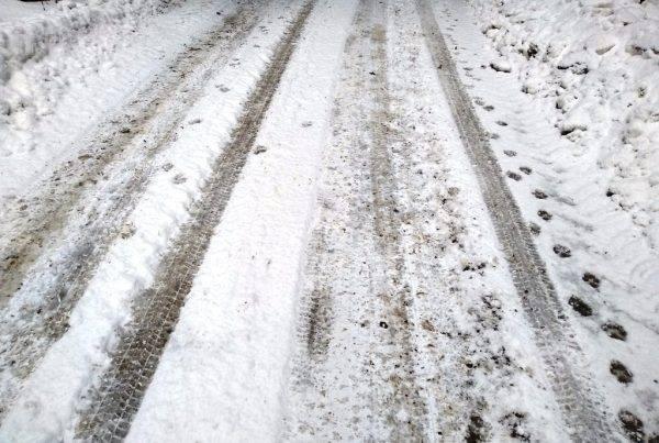 Tragovi u snijegu-čopor Mrkopalj