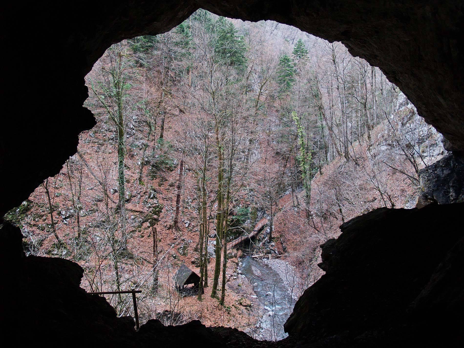 Gorski kotar – the habitat of large carnivores
